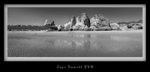 Cape Domett B&W