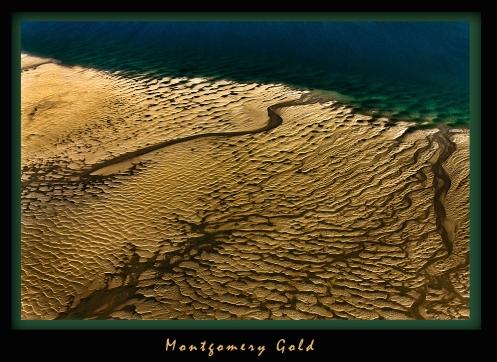 Montgomery Gold