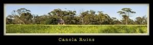 Canola- Ruins