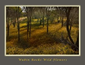 Wubin Rocks WF
